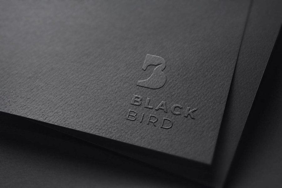 Agence de communication – Graphiste – Genève – Lausanne – Logo – Black Bird